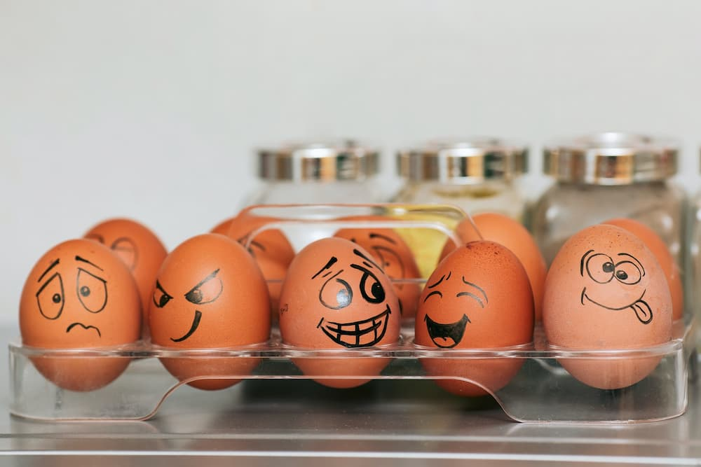 Read more about the article How To Carry Eggs On A Bike Safely And Without Breaking Them