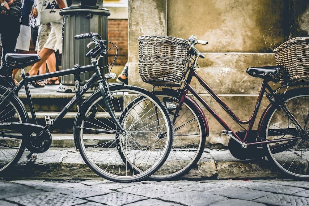 Front Bike Basket vs Rear Bike Basket – The Feature Comparison