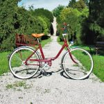 How to Use a Rear Bike Rack?
